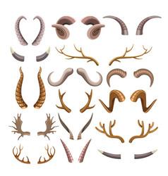 Branchy and sharp horns wild animals set vector