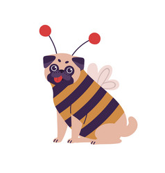 Cute dog pug breed in bee costume flat vector