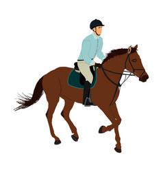 Jockey riding racing horse in gallop on hippodrome vector