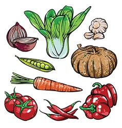 Organic vegetables Healthy sketch diet vector