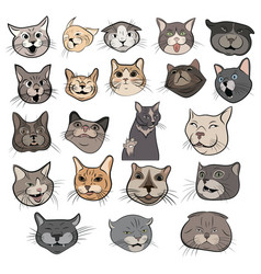 set funny cats collection portraits of vector image