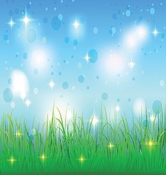 summer sky and meadow with grass vector image vector image