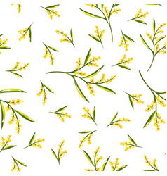 seamless pattern with mimosa flower vector image vector image