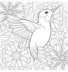 Adult coloring bookpage a cute hummingbird on the vector