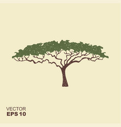 African tree icon acacia tree silhouette icon vector