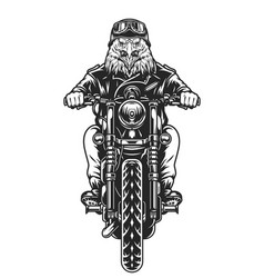 Angry eagle head moto rider vector