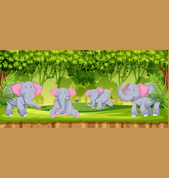 elephants in the jungle scene vector image