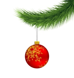 Red Christmas ball on pine branch isolated on vector