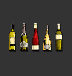 set wine bottle vector image