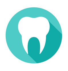 tooth circle icon vector image