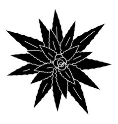 top view aloe vera icon simple style vector image