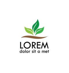 leaf plant organic logo vector image vector image