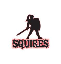 Knight Silhouette Squires Sword Shield Cartoon vector image vector image