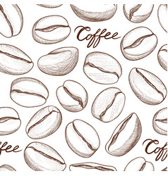 coffee seamless pattern coffee beans hand-drawn vector image