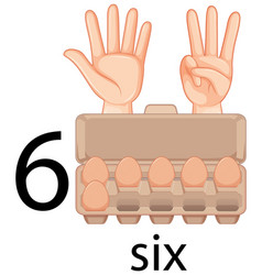 Counting number six with eggs in carton vector
