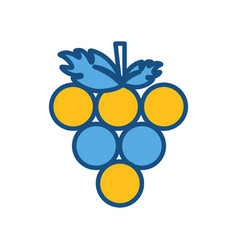 Delicious grape fruit icon vector
