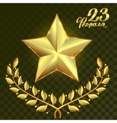 Gold star and laurel wreath branch on transparent vector image