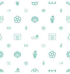 ornament icons pattern seamless white background vector image