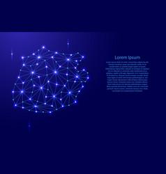 saba map of polygonal mosaic lines network rays vector image