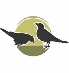 crows vector image