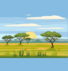 African landscape savannah sunset vector