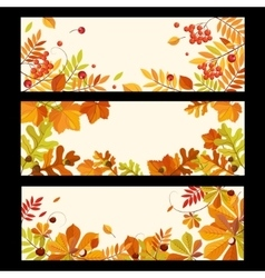 Autumn Banners with Berries and Leaves vector