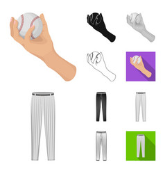 baseball and attributes cartoonblackflat vector image