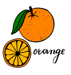 Bright ripe orange with one green leaf half a vector