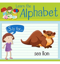 Flashcard letter S is for sea lion vector