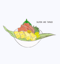 Fresh salmon and egg roll sashimi hand draw vector