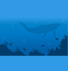 Landscape of big whale and fish silhouettes vector