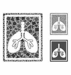 Lungs fluorography composition icon inequal vector