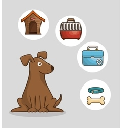Pet shop elements set vector