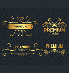 set premium quality golden frames vector image