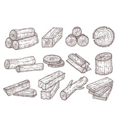sketch lumber wood logs trunk and planks vector image