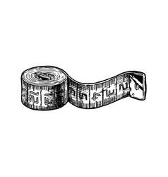 tape measure vector image