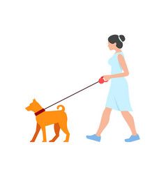 woman walking dog vector image