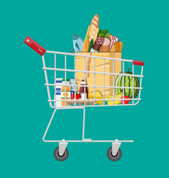 shopping cart full of groceries products vector image vector image
