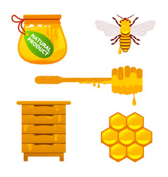 Bee and honey set vector