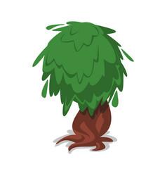 green old oak vecor icon vector image