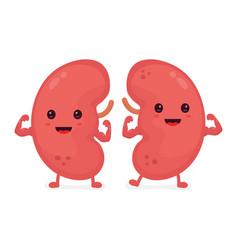 Happy cute smiling healthy kidney vector