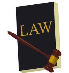 book of law v vector image vector image