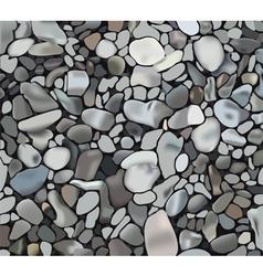 rocky texture vector image vector image