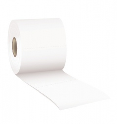 toilet rolled vector image