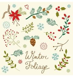 Winter foliage vector image vector image