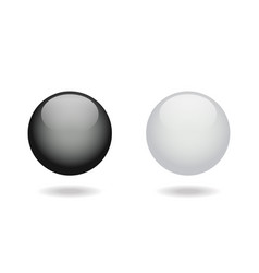 black and white glossy balls vector image