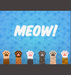 cat paw flat background cats cartoon pet paws vector image
