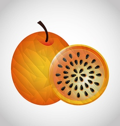 delicious fruit vector image vector image