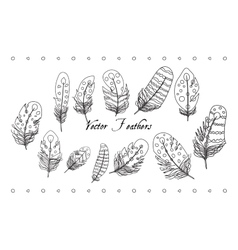 Feather Line Set vector image