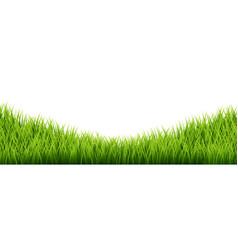 Green grass border set on white background vector